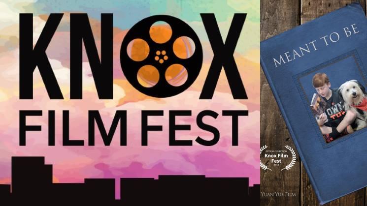 Knox Film Fest Header Image